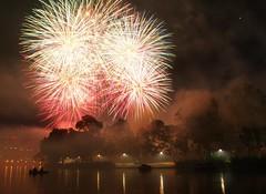 Midnight fireworks, 1/1/2013 (1)