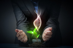 organic science theme with dna