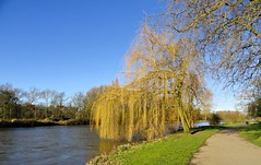 RIVER TRENT AT BURTON UPON TRENT