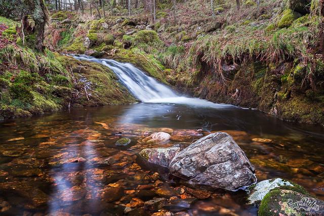River Mardle