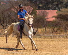 "Crossroads Equestrian Centre • <a style=""font-size:0.8em;"" href=""http://www.flickr.com/photos/67597598@N08/29468626000/"" target=""_blank"">View on Flickr</a>"