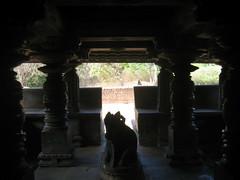 KALASI Temple photos clicked by Chinmaya M.Rao (119)