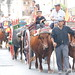 "2012-07-29-feria-almoradi-desfile-animales-tradicionales • <a style=""font-size:0.8em;"" href=""http://www.flickr.com/photos/51501120@N05/7669694368/"" target=""_blank"">View on Flickr</a>"