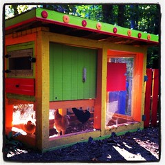 BEST CHICKEN COOP: Chicken Coop, Cameron Kempson