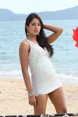 South Actress SANJJANAA Photos Set-5-Hot Piks (44)