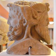 Janus-herm (3)