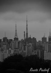 Concrete Jungle and the sky piercing antennas