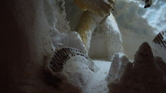 """Wampa Cave diorama • <a style=""""font-size:0.8em;"""" href=""""http://www.flickr.com/photos/86825788@N06/8361622487/"""" target=""""_blank"""">View on Flickr</a>"""