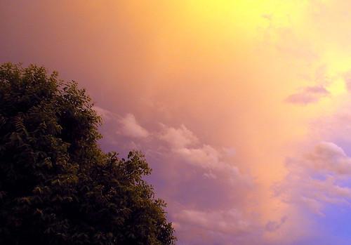 Sunset reflections (Fabianni L. Ribeiro)