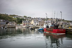 Gourdon's harbour