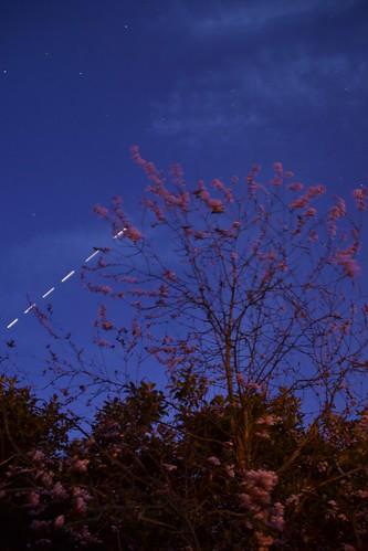 The ISS Above the Cherry Blossom