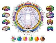 Brain Art