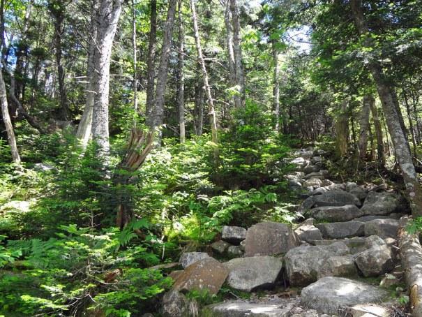 NH Appalachian Trail Climb to Galehead Hut