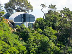 House above Seatoun