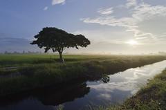 Sungai Besar, 2012-12-16