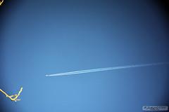 Flight Road