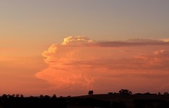 Image result for humid evening rural australia