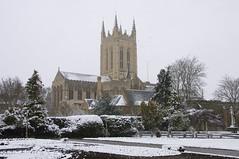 Snowy Bury St Edmunds, Abbey Gardens, Bury Cat...