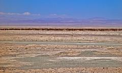 Cruces en el desierto