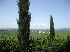 crete-senesi 152