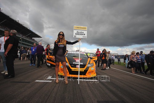 Gordon Shedden on the grid at Rockingham 2016