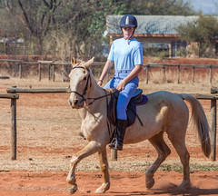 "Crossroads Equestrian Centre • <a style=""font-size:0.8em;"" href=""http://www.flickr.com/photos/67597598@N08/29135969743/"" target=""_blank"">View on Flickr</a>"