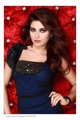 Bollywood Actress ANCHAL SINGH Photos Set-1 (11)