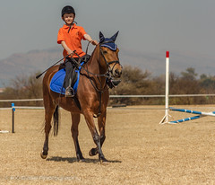 """Crossroads Equestrian Centre • <a style=""""font-size:0.8em;"""" href=""""http://www.flickr.com/photos/67597598@N08/29678656471/"""" target=""""_blank"""">View on Flickr</a>"""