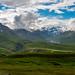 "20160626-Alaska-166 • <a style=""font-size:0.8em;"" href=""http://www.flickr.com/photos/41711332@N00/28274118676/"" target=""_blank"">View on Flickr</a>"