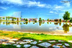 PAU Göl
