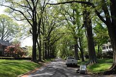 Gorgeous street above Richmond, VA