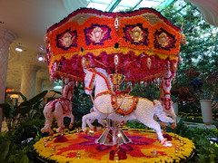 2015 01 15 Wynn Carousel