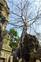 Angkor Wat, Cambodia 2015