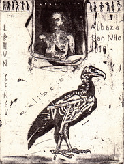 Sengul Erhun_Opera1-Bird