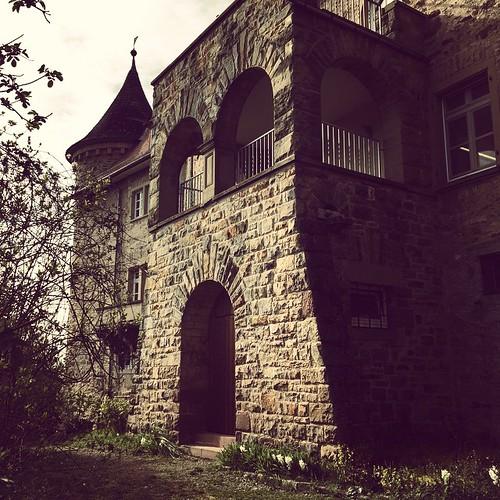 #Jugendburg #Rotenberg