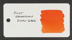 Pilot Iroshizuku Fuyu-Gaki - Word Card