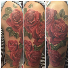 """roses • <a style=""""font-size:0.8em;"""" href=""""http://www.flickr.com/photos/91580856@N07/17056627041/"""" target=""""_blank"""">View on Flickr</a>"""