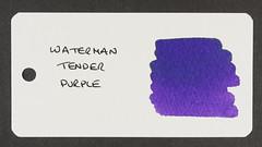 Waterman Tender Purple - Word Card
