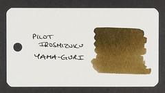 Pilot Iroshizuku Yama-Guri - Word Card
