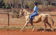 "Crossroads Equestrian Centre • <a style=""font-size:0.8em;"" href=""http://www.flickr.com/photos/67597598@N08/29761002785/"" target=""_blank"">View on Flickr</a>"