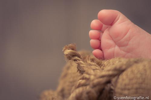 Een nieuw voetje