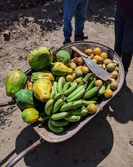 The harvest. #theworldwalk #travel #peru