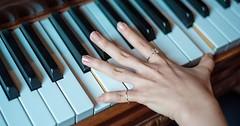 """Die Klaviertastatur. Die Klaviertastaturen. Oder: Die Klaviatur. Die Klaviaturen. • <a style=""""font-size:0.8em;"""" href=""""http://www.flickr.com/photos/42554185@N00/28287043400/"""" target=""""_blank"""">View on Flickr</a>"""
