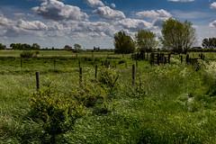 Flanders Fields - Natuurgebied Broekmolen
