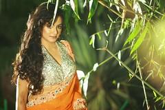 South actress Madhu Chanda Photos Set-1-Hot In Saree (17)
