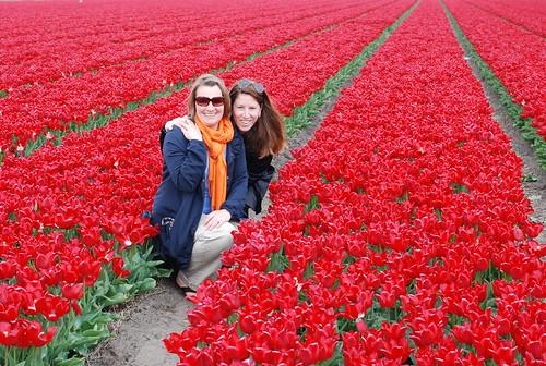 Lisse, Netherlands tulip fields