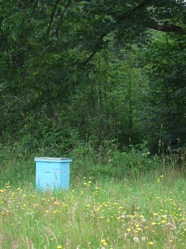 the bee yard by SewCrafty