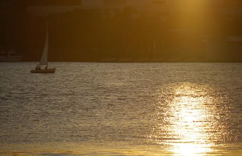 Sunset sailors