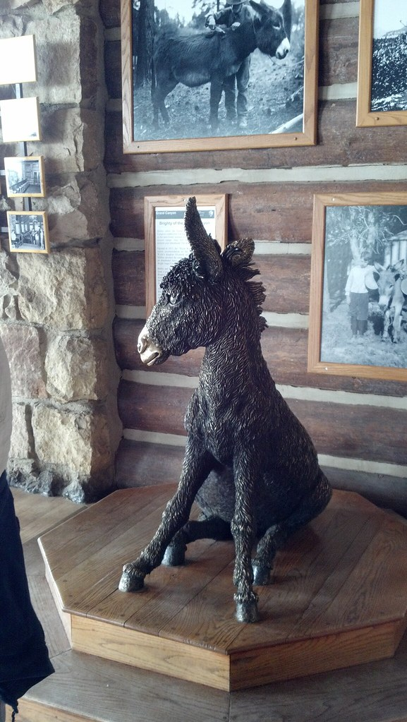 Brighty the burro