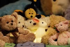 Rabbit and Teddy Bears